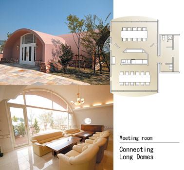 Japan's Styrofoam Dome Homes