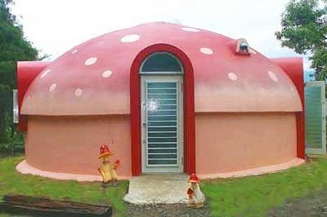 Japan S Styrofoam Dome Homes