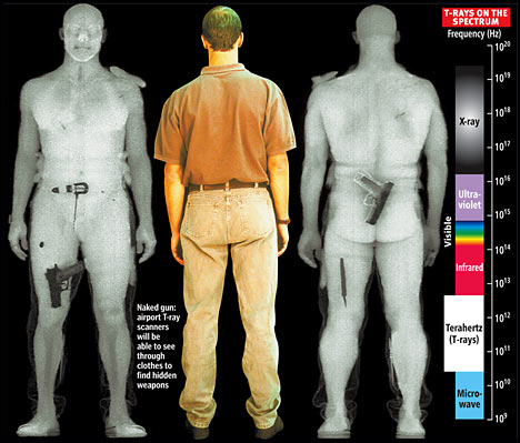 http://www.impactlab.com/wp-content/uploads/2008/09/body-scanners-372.jpg