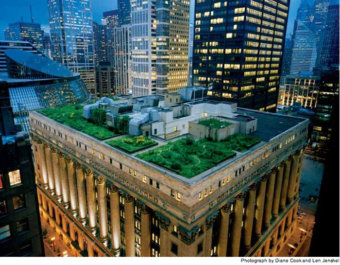 Green Space Rooftops Bossoming Around The World
