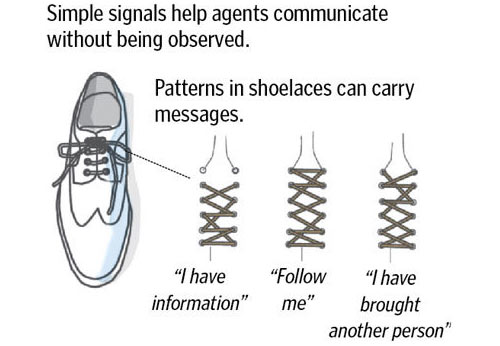 cia-shoelaces 1234