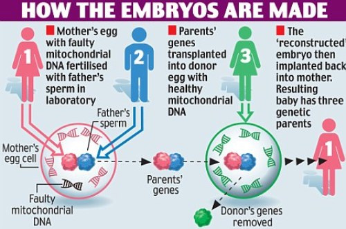 moral permissibility of using discarded in vitro fertilization ivf embryos The question of what to do with the frozen embryos, i sometimes remind my  for  those embryos that do end up abandoned in liquid nitrogen, the question often  arises: would it be morally permissible to give them up for embryo adoption,   more embryos ivf clinic operators would be able to placate themselves by  saying,.
