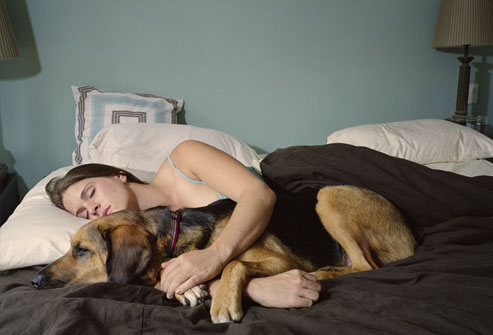 sleeping_with_dog 654