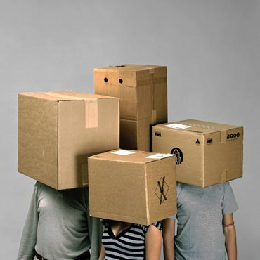 Box People 441