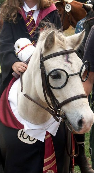 Harry Potter Horse 573s