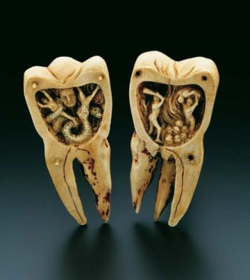 Tooth Carvings 905