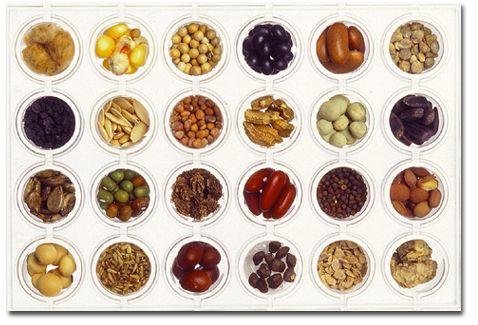seed4bank 32
