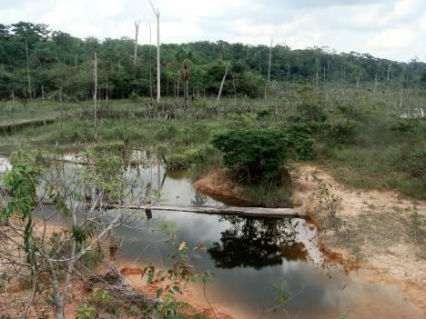 amazon-dry-river345t
