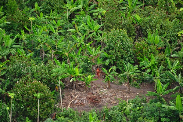 uncontacted_man 3