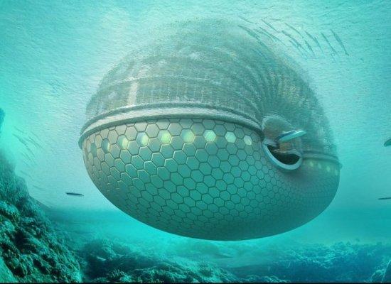 Future-Cruise-Ship-830
