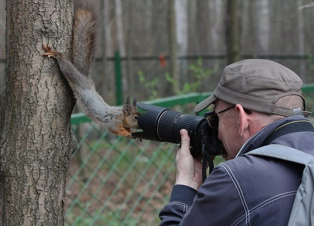 Squirrel getting a little friendly 553