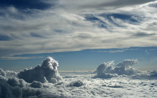 Lion, King of the Clouds 2456jd