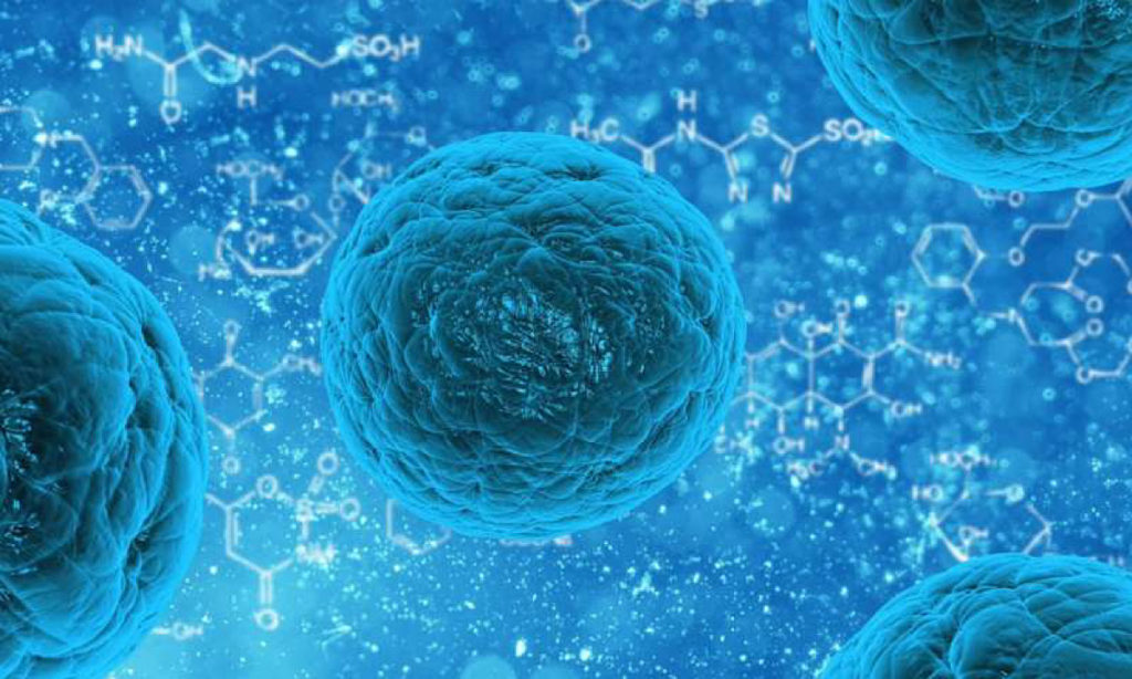 research-dispels-fears-human-stem-cells-contain-cancer