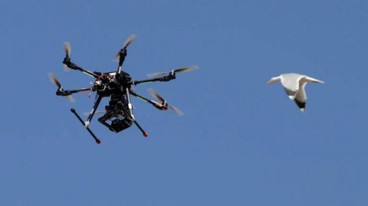 India to start drone trials for delivery of food, medicines, vaccines: Check details