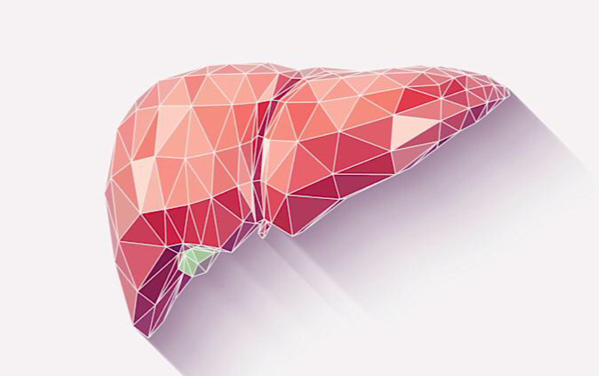 Wake Forest teams win a NASA prize for 3D printing human liver tissue