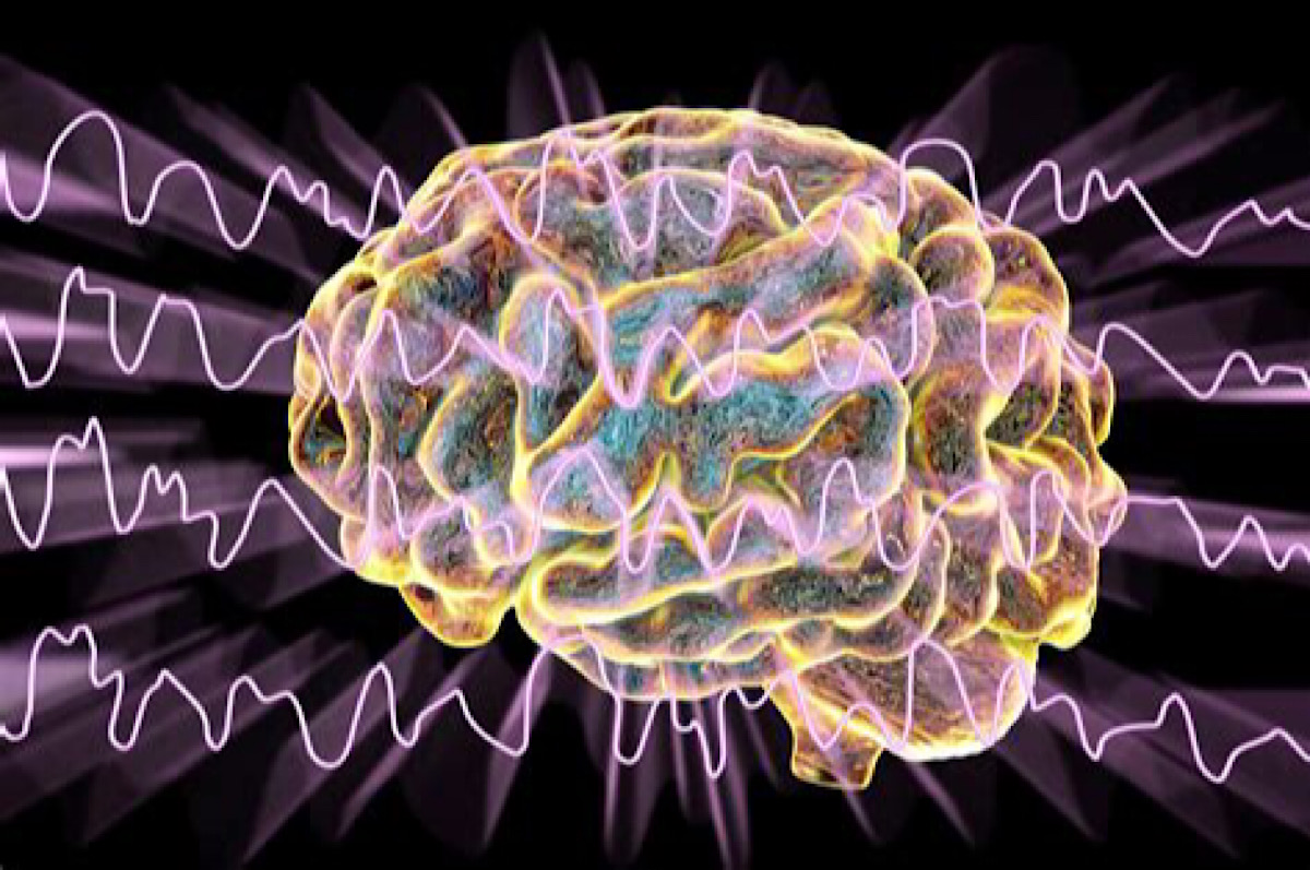 How Virtual Reality Unveiled a Unique Brain Wave That Could Boost Learning