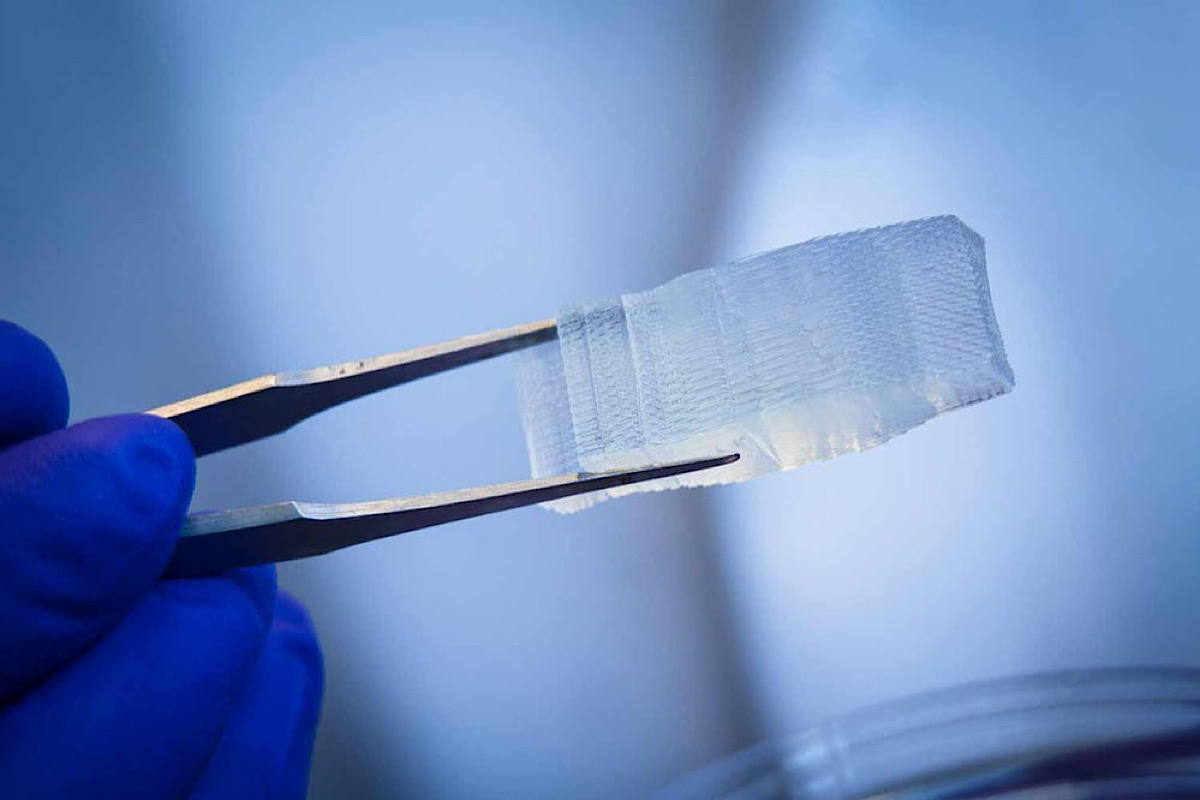 Healing wounds and regrowing bones: Duke faculty develop futuristic biomaterial implants