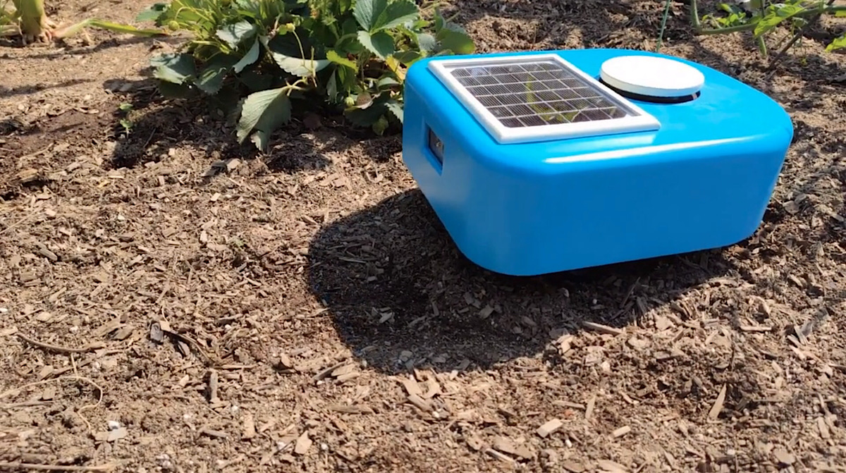 Machine Learning Bot Can Replace Your Gardener, It Plants and Weeds on Its Own