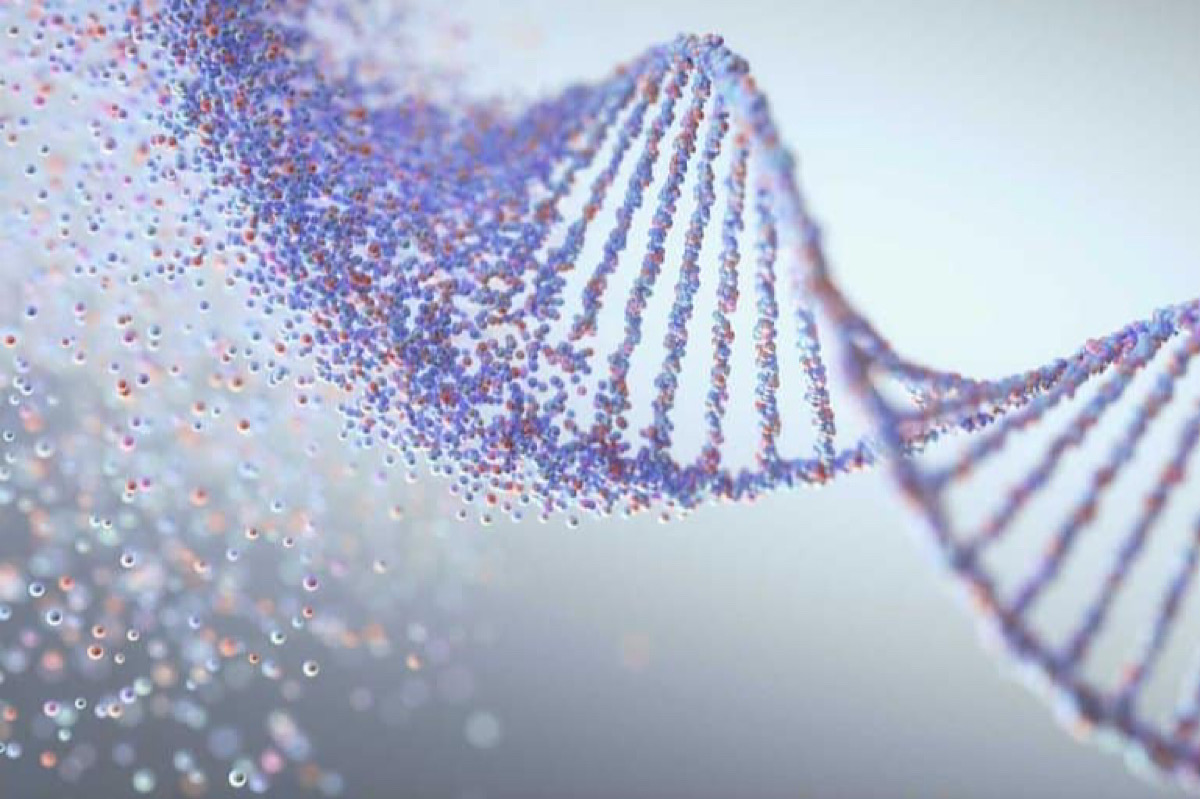 New Gene Therapy Pathway Could Protect Us From Cancer and Dementia